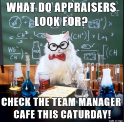 what appraisers look for saturday at team manager