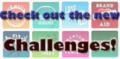 2014-2015 Team Challenges